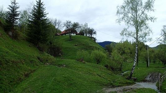 vacanta in Zarnesti