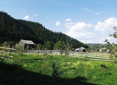 vacanta in Sadova