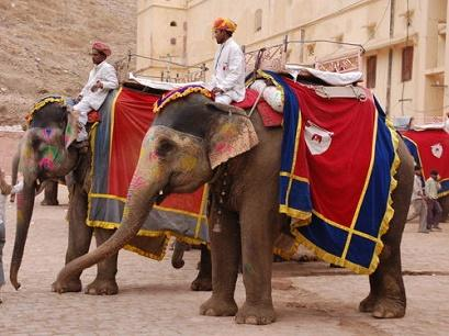 vacanta in Jaipur