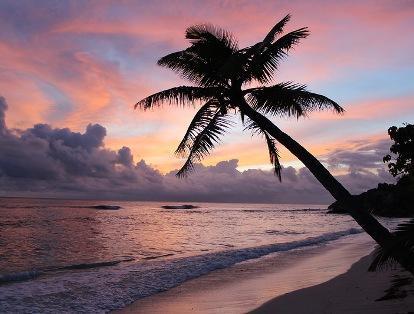 vacanta in Praslin Island