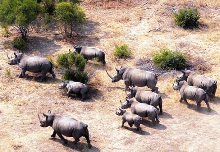 vacanta in Africa de Sud